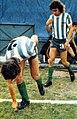Banfield jugadores 1978.jpg