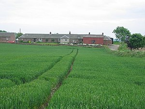 Bardmony. Farm cottages across arable crops.