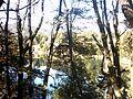 Bariloche. Lago Nahuel Huapi-2.JPG