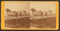 Bathing house and Battery, Charleston, S.C, from Robert N. Dennis collection of stereoscopic views.png