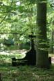 Baum-mit-grabstein.png
