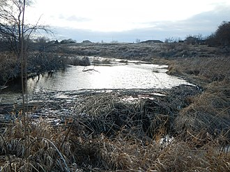 Amon Creek - A beaver dam on the West Fork of Amon Creek in Amon Basin