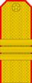 Belarus MIA—15 Sergeant rank insignia (Golden).png