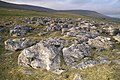 Below Fell Close - geograph.org.uk - 311643.jpg
