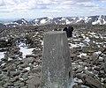 Ben MacDui , Munro No 2 - geograph.org.uk - 69852.jpg
