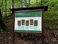 Biogradska gora - National Park, the oldest protected natural resource in Montenegro 11.jpg