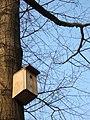 Birdhouse (5494542157).jpg