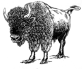 Bison (PSF).png