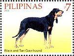 Black-and-Tan-Coonhound-Canis-lupus-familiaris.jpg