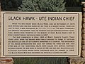 Blawk Hawk - Ute India Chief sign, Spring Lake, Utah, May 16.jpg