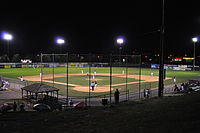 Blue Sox Swamp Bats Behind HP1.JPG