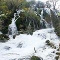 Bonsai Shoals 盆栽灘 - panoramio.jpg