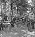 Bosbewerking, arbeiders, boomstammen, werkzaamheden, Bestanddeelnr 251-8145.jpg
