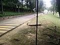Botanical Garden in Putrajaya, Malaysia 03.jpg