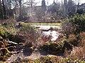 Botanischergarten Duisburg 6.JPG
