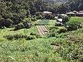 Brasil Rural - panoramio (58).jpg
