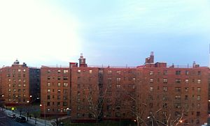 Breevort Houses - Brevoort Houses from Patchen Ave.