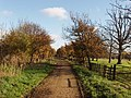 Bridleway between Osterley Park and the M4 motorway - geograph.org.uk - 620907.jpg