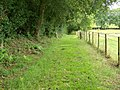 Bridleway near Lover - geograph.org.uk - 1408184.jpg