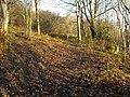Bridleway through the trees - geograph.org.uk - 1064323.jpg