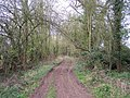 Bridleway to Sutton St. Nicholas - geograph.org.uk - 152891.jpg