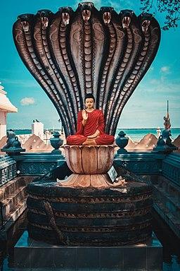 Buddha Statue at Nagadeepa Sri Lanka