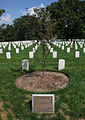 Buffalo Soldiers memorial - Arlington National Cemetery - 2011.JPG