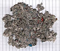 Bulk recycled cellulose scan.jpg