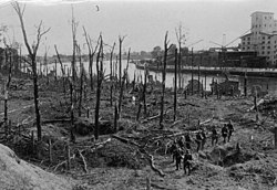 Bundesarchiv Bild 183-2008-0513-500, Danzig, Westerplatte, Wald