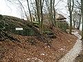 Burgberg Harzburg Wehr- Ringmauer (4).JPG