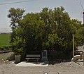 Buttonwillow Tree Landmark.jpg