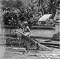 COLLECTIE TROPENMUSEUM Vrouw die bezig is met het verzamelen van kokosbladeren TMnr 20000015.jpg