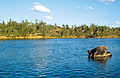 CSIRO ScienceImage 4045 Late afternoon along the Burdekin River near Charters Towers QLD.jpg