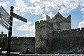 Cahir Castle, Castle St, Cahir (506763) (28543838926).jpg