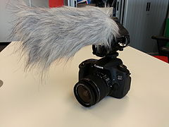 Canon EOS 60D with RODE video mic.jpg