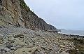 Cape Enrage cliffs.jpg