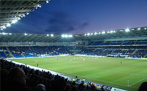 Cardiff City F.C. - Cardiff City Stadium pitch in 2010
