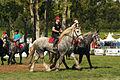 Carroussel à 16 chevaux montés Mondial du percheron 2011 Cl J Weber06 (23715705029).jpg