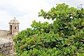 Cartagena, Colombia - Laslovarga (16).jpg
