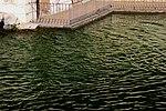 Caserta Fuente de los Delfines 19.jpg