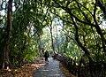 Cataratas Victoria 44.jpg