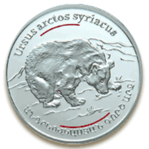 "Syrian brown bear - This silver commemorative coin depicting the Trans-Caucasian grey bear has been issued by the Central Bank of Armenia under the International Program ""Wild World of Caucasus""."
