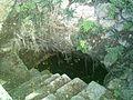 Cenote del Parque de Cholul, Yucatán (04).jpg