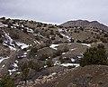Cerillos Hills (5308124615).jpg