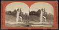 Champion Sprouting Spring, Saratoga N.Y, from Robert N. Dennis collection of stereoscopic views 2.png