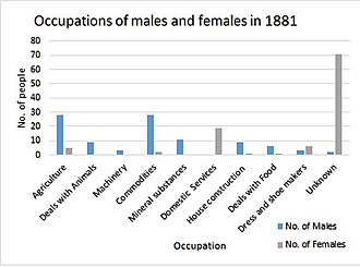 Knodishall - Chart showing the different occupations by gender in Knodishall in 1881