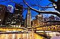 Chicago winter 2014 frozen.jpg