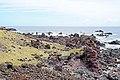 Chile-02801 - Lava Rock Everywhere (49072794381).jpg
