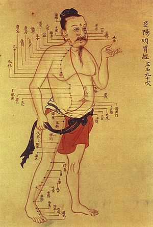 Traditional Chinese medicine - Old Chinese medical chart on acupuncture meridians