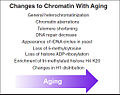 Chromatin aging.jpg